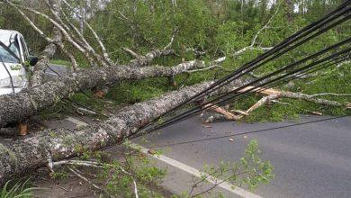 Photo of Alerta Temprana Preventiva: Fuertes vientos provocan cortes de energía eléctrica en La Araucania