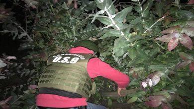 Photo of Carabineros y Fiscalía recuperan 200 kilos de cable de cobre robado en Galvarino