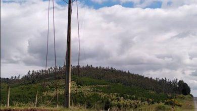 Photo of Cinco nuevos robos de cables provocan corte de energía en sectores rurales de la Araucanía