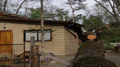 Photo of Fuertes vientos generan diversas emergencias en  La Araucanía