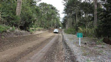 Photo of A fines de noviembre se inician obras de pavimentación de la Ruta S-61 Melipeuco – Icalma