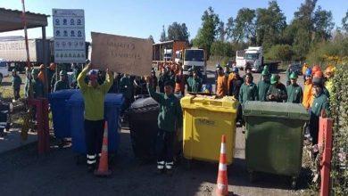 Photo of Cierra la empresa Venturelli y 500 trabajadores son despedidos en La Araucania