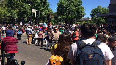 Photo of Con nueva marcha los profesionales de la salud mantendrán las manifestaciones en Temuco