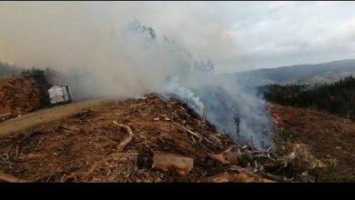 Photo of La Araucanía: Atentado deja tres máquinas forestales quemadas
