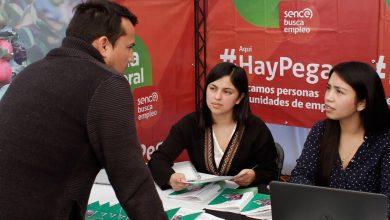 """Photo of Feria Laboral """"Busca Empleo"""" del Sence entregará opciones de empleo en Villarrica"""