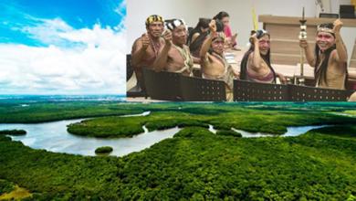 Photo of Tribu amazónica gana demanda contra compañía petrolera, salvando un millón de hectáreas de selva tropical