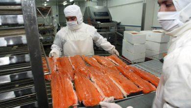 Photo of Retiran salmón ahumado de supermercados, estaría contaminado con «listeria»