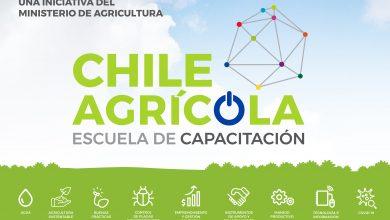 Photo of Minagri lanza sitio web de capacitación e información técnica enfocada en la pequeña agricultura