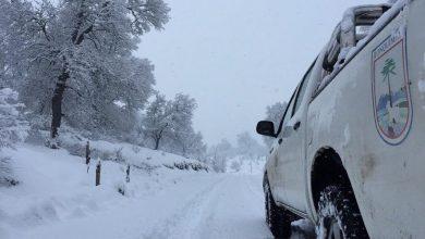 Photo of Intensas nevadas se registran en Lonquimay