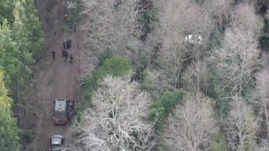 Photo of Prisión preventiva para detenido por hurto de madera y porte de munición en Ercilla