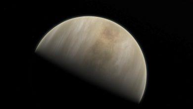 Photo of Astrónomos descubrieron indicios de vida en las nubes de Venus