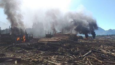 Photo of Nuevo ataque incendiario deja maquinaria quemada en Cunco