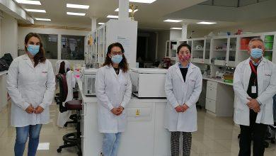 Photo of ANID apuesta por potenciar investigación en leguminosas de grano.