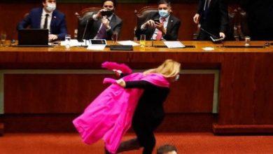 Photo of Abstención de Pamela Jiles incide para que el RN Diego Paulsen siga siendo Presidente de la Cámara de Diputados