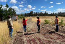 Photo of Autoridades supervisan realización de cortafuegos en cuatro comunas de Malleco