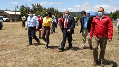 Photo of Programa Chile Indígena de CONADI aumenta en un 39% su presupuesto para atender a 1.600 comunidades durante 2021
