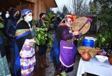 Photo of Ministra Rubilar y Director Nacional de CONADI celebraron Wetxipantü con machis en la comuna de Freire