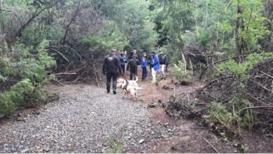 Photo of Secuestro y homicidio en Collipulli: PDI encuentra nuevos restos óseos en zona rural