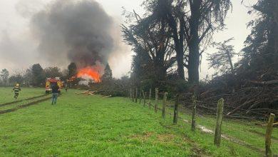 Photo of Lugareños afirman que tromba marina provocó daños en un hogar y caída de árboles en Toltén Viejo