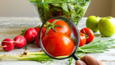Photo of Ufro abre nuevo programa de magíster en innovación y gestión agroalimentaria