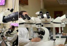 Photo of Nuevo equipo de Anatomía Patológica refuerza el trabajo en conjunto de los especialistas del HHHA