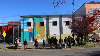 """Photo of Colectivo """"Alapinta"""" inicia ejecución de mural en la histórica Biblioteca Galo Sepúlveda de Temuco"""