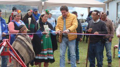 Photo of Municipio de Lumaco apoya a comunidades mapuche para avanzar en materia agrícola
